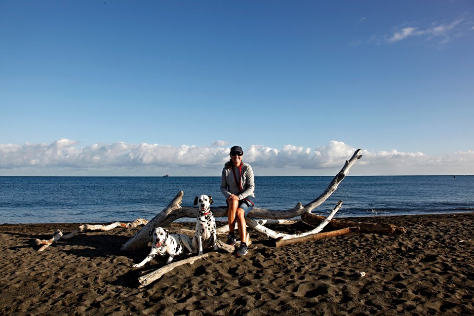 Dalmatian dogs on a beach with owner