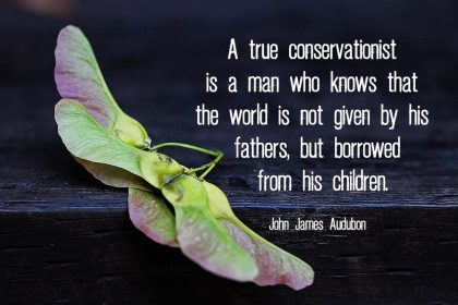 Conservation quote (Audubon)