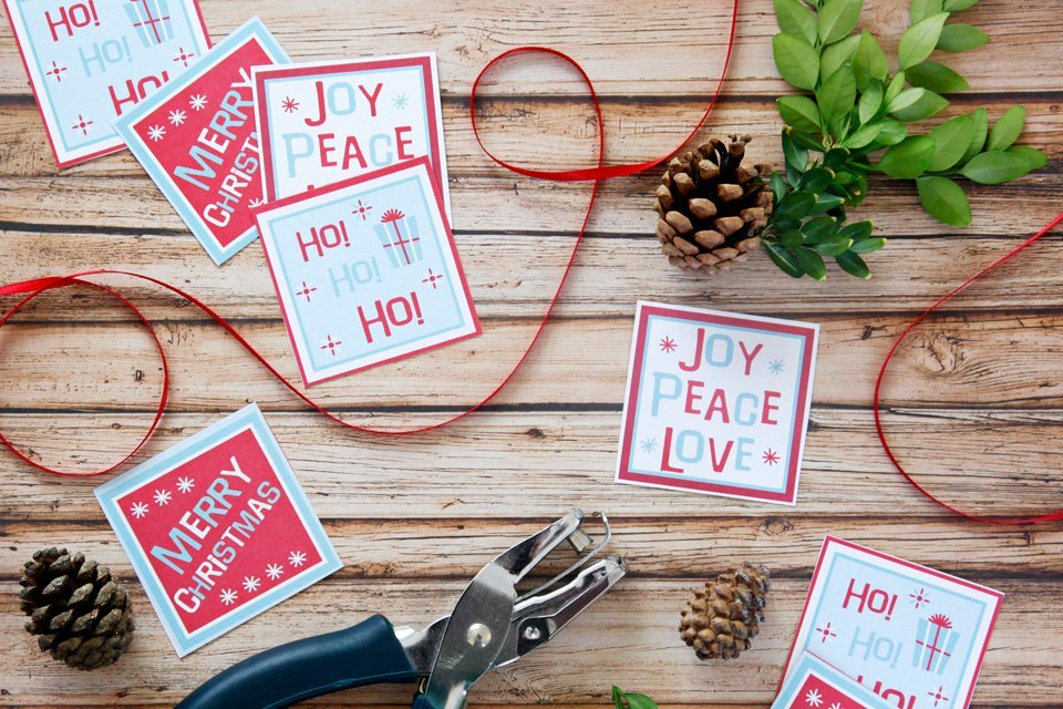 Paper Christmas gift tags with pine cones and ribbon