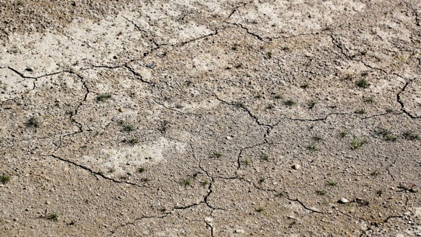 Dry cracked clay soil
