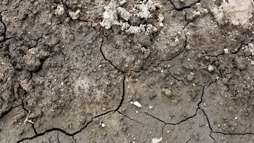 Cracked muddy clay soil