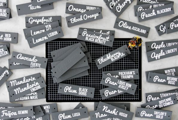 DIY painted garden markers and plant labels using Cricut masks