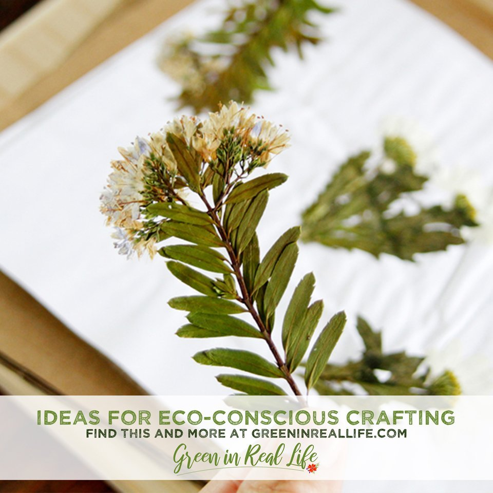 Earth Day Ideas for Eco-Conscious Crafting