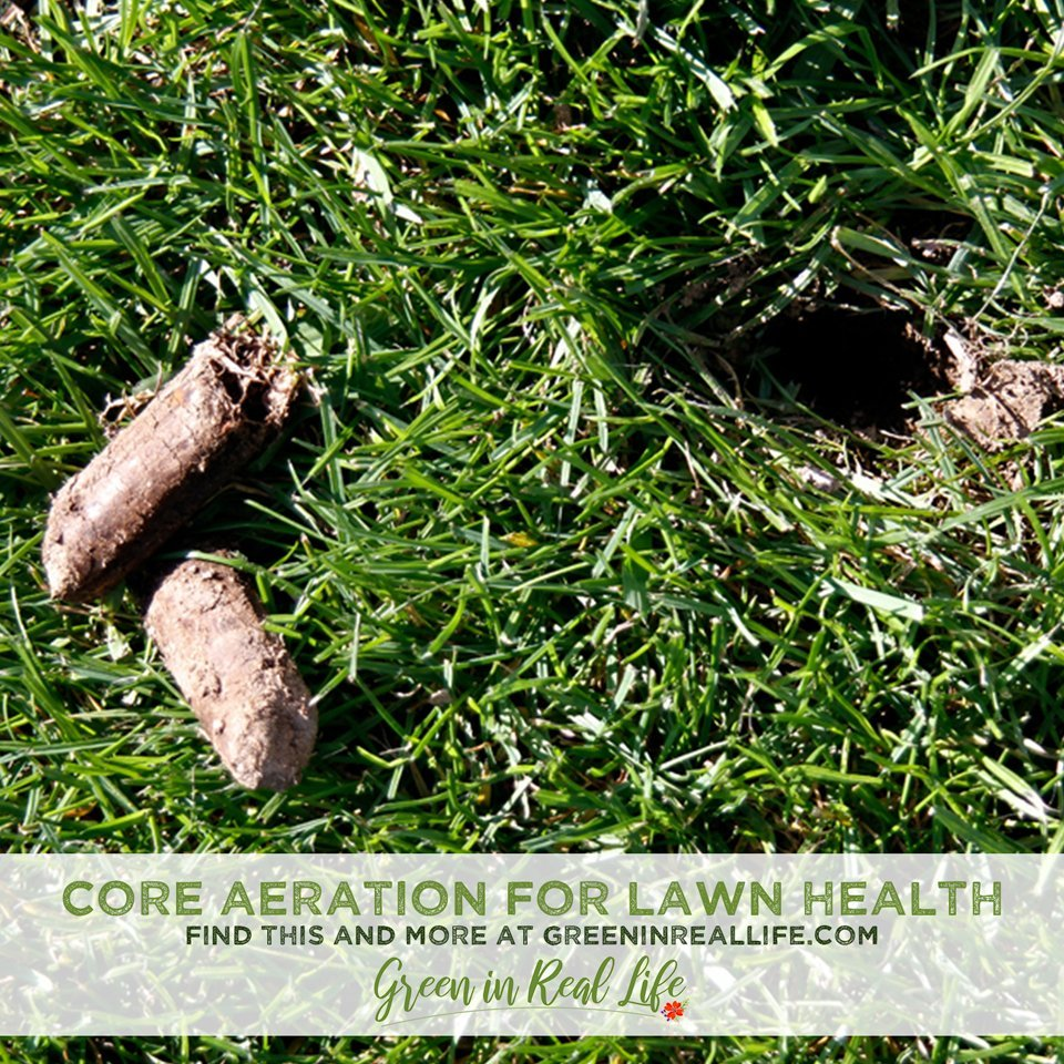 DIY Core Aeration for Improved Lawn Health