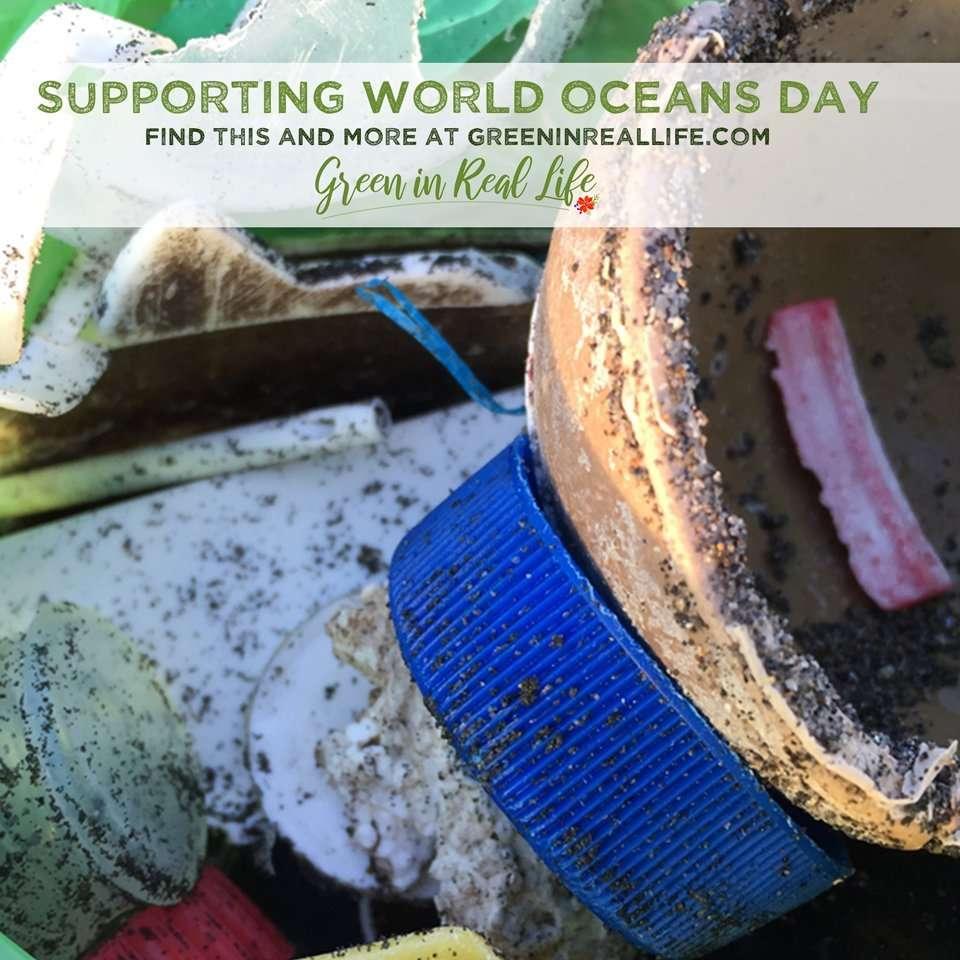 World Oceans Day beach litter collection