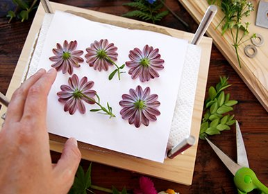DIY and Crafts - Pressing flowers in a homemade wooden flower press