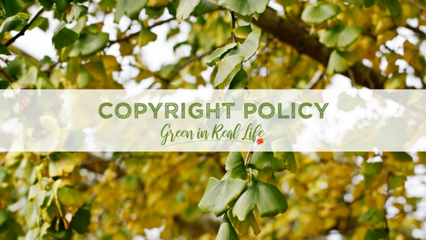 Copyright Policy Green in Real Life Blog - Page Header