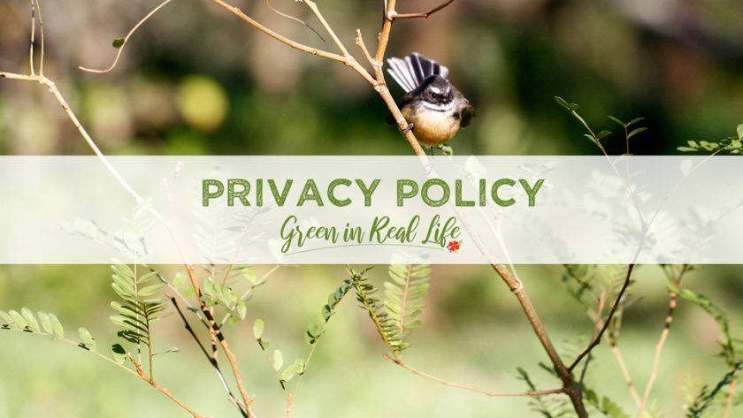 Privacy Policy Green in Real Life Blog - Page Header