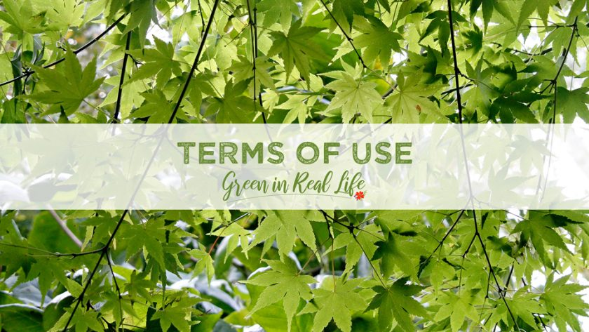 Terms of Use Green in Real Life Blog - Page Header