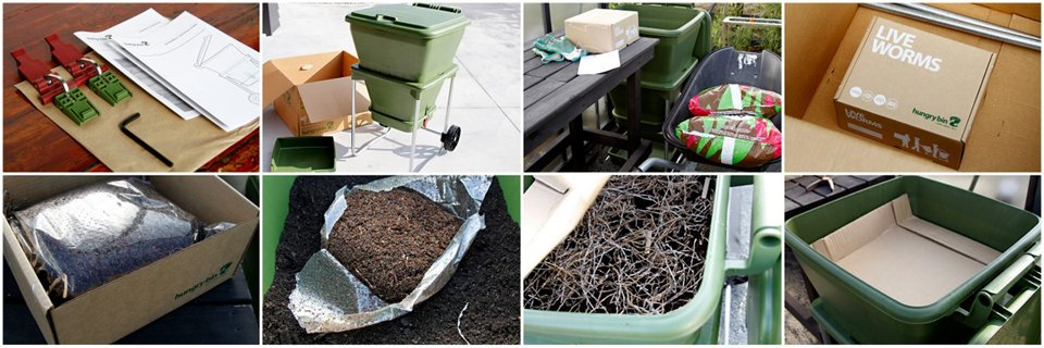 Setting up a Hungry Bin worm farm home composter