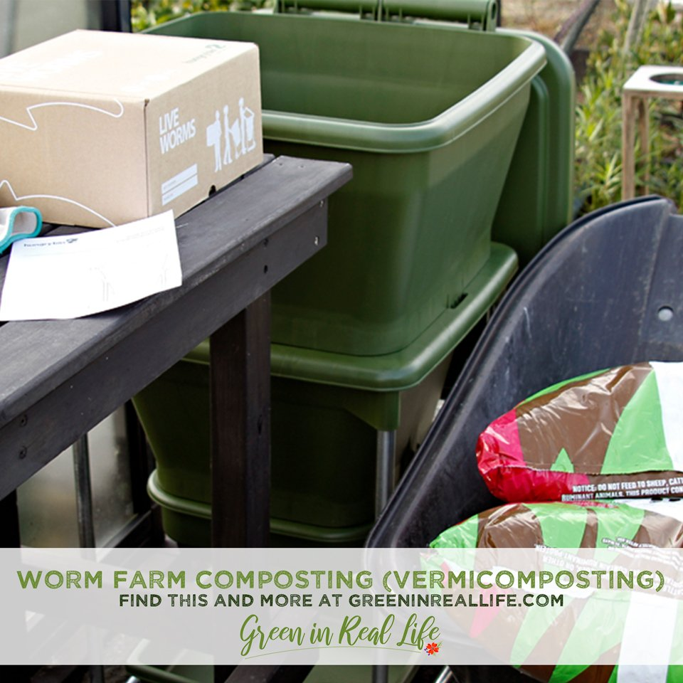 Vermicomposting and worm farming