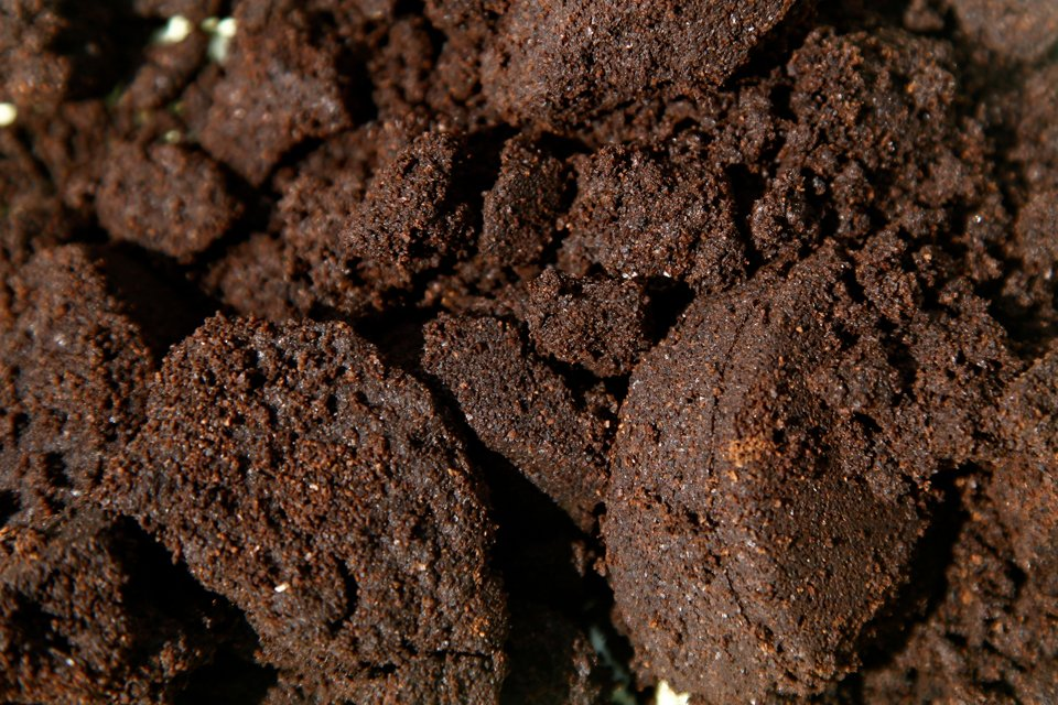 Using coffee grounds in the home garden