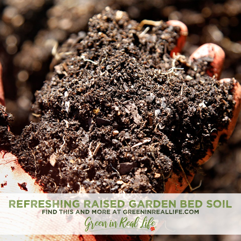 Refreshing and amending raised garden bed soil for replanting